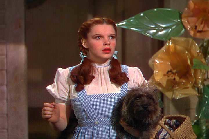 when things won't return to normal | Clip from Wizard of Oz
